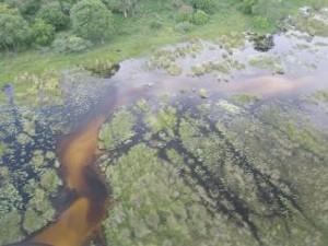 OkavangoDelta_byAir